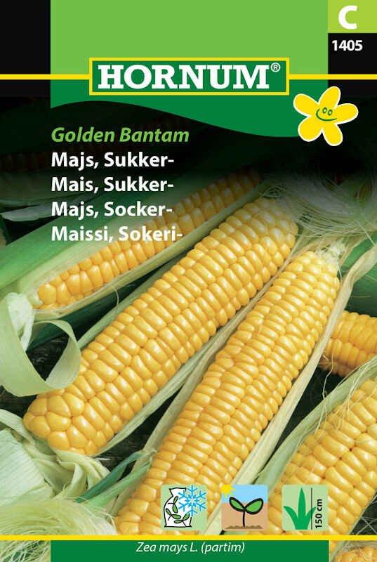 Majsfrø - Sukkermajs - Golden Bantam