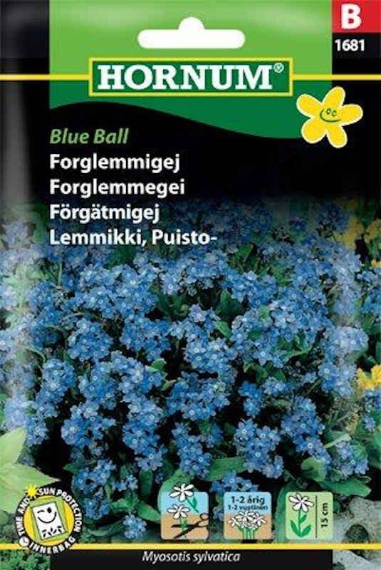 Forglemmigej frø - Blue Ball