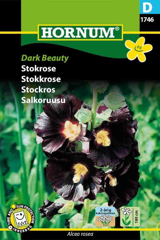 Stokrose frø - Dark Beauty