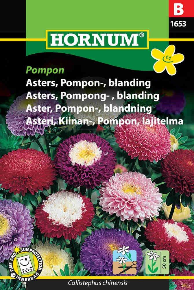 Asters frø - Pompon - blanding - Pompon