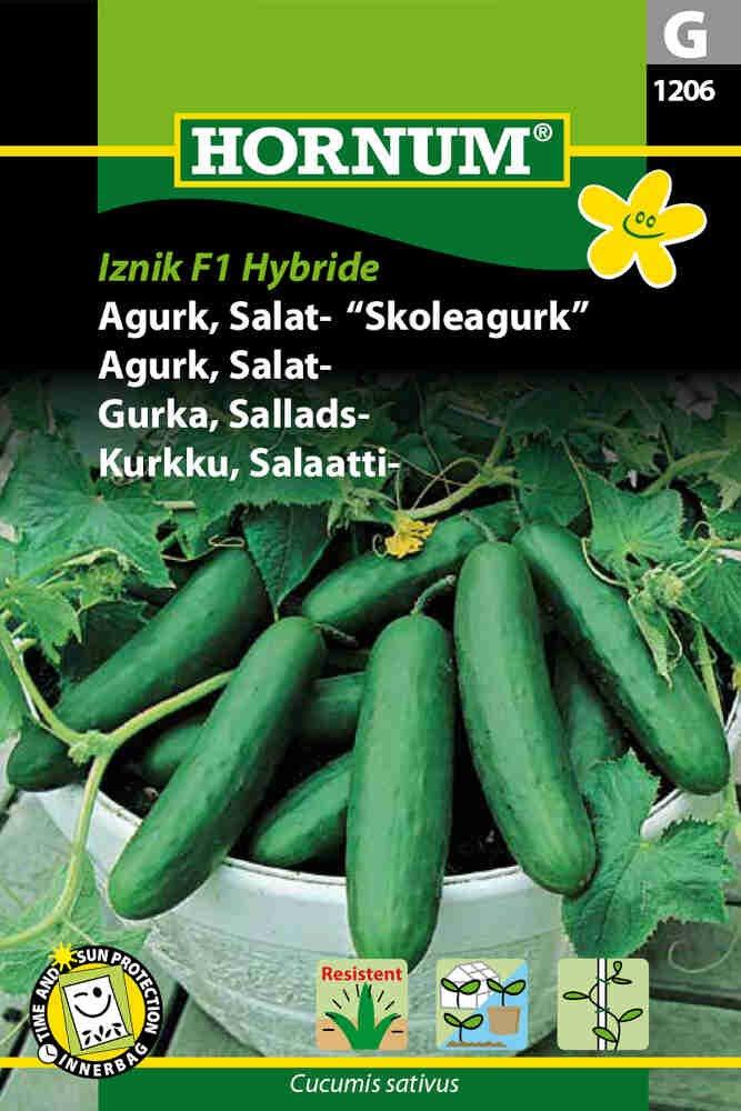 Agurkefrø - Salatagurk - Iznik F1 Hybride