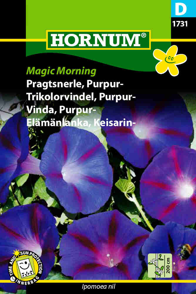 Pragtsnerle frø - Purpur - Magic Morning