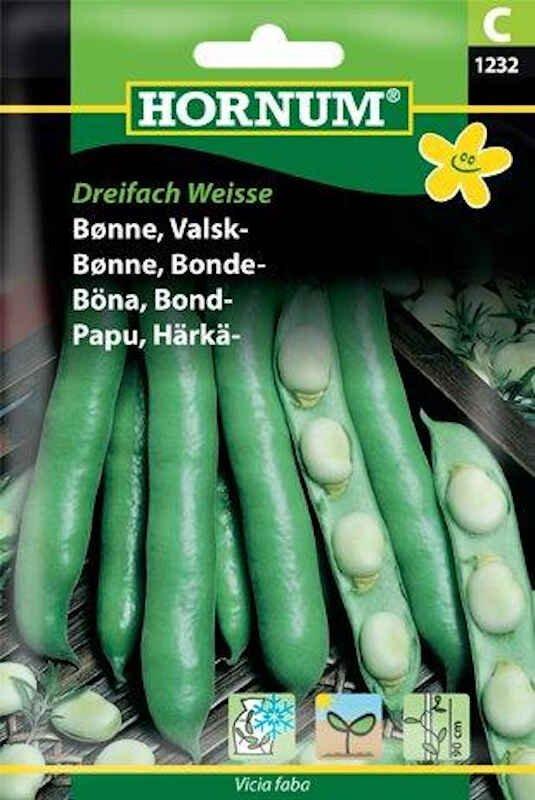 Bønnefrø - Valskbønne - Dreifach Weisse