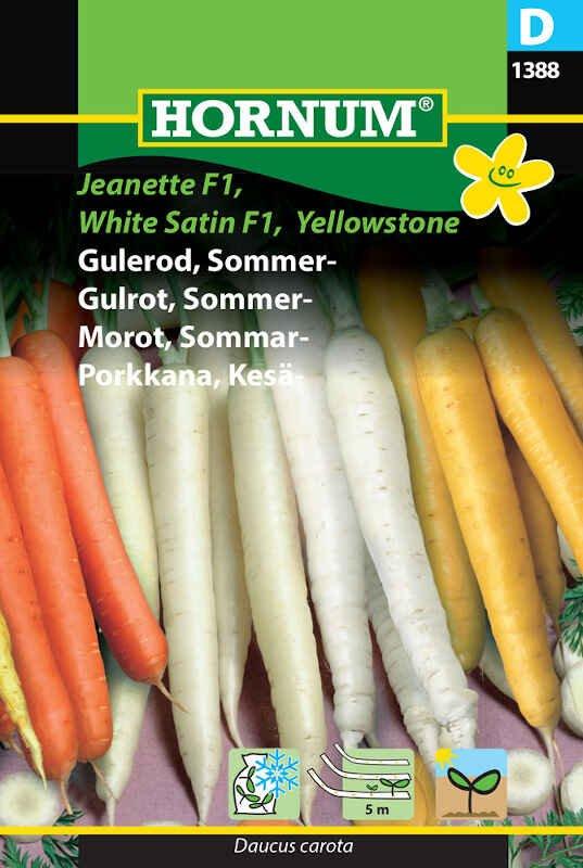 Gulerodsfrø - Sommergulerod - såbånd mix