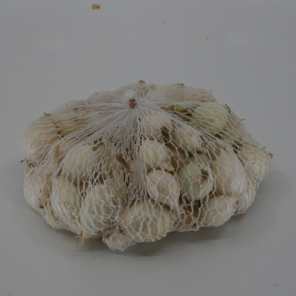 Salatløg Snowball sætteløg
