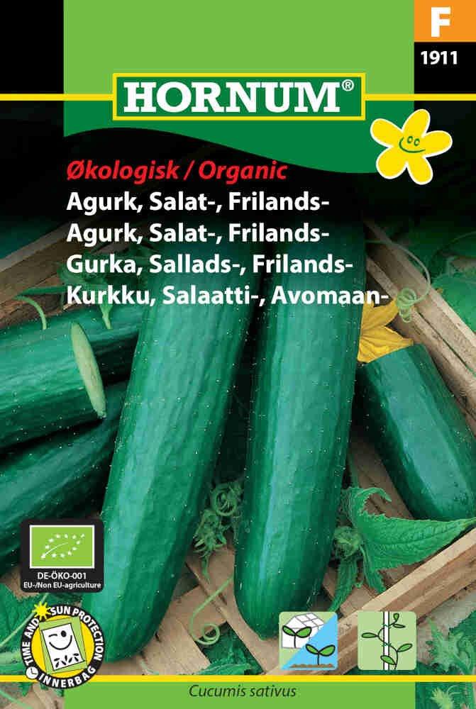 Agurke frø - Salatagurk - Frilands - Sonja - Økologisk