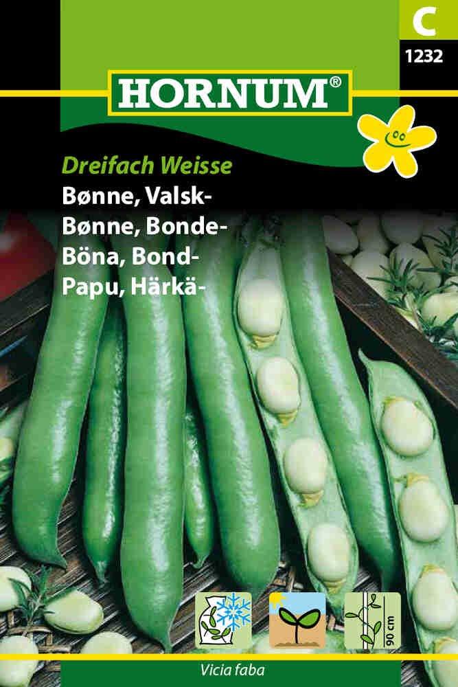 Hestebønne - Valskbønne - Dreifach Weisse