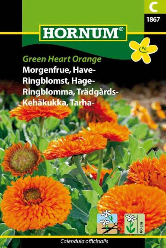 Morgenfrue frø - Have - Green Heart Orange