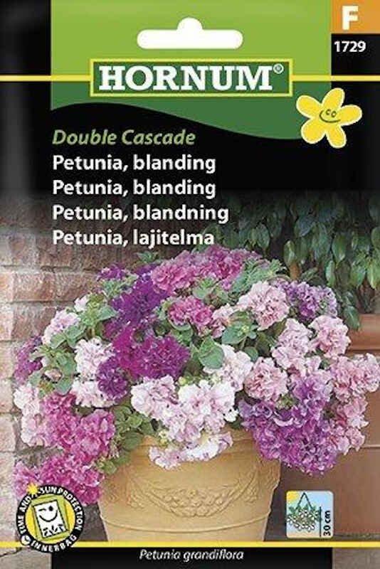 Petunia frø - blanding - Double Cascade