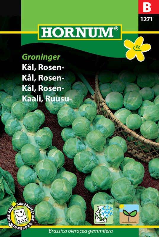 Rosenkål frø - Groninger