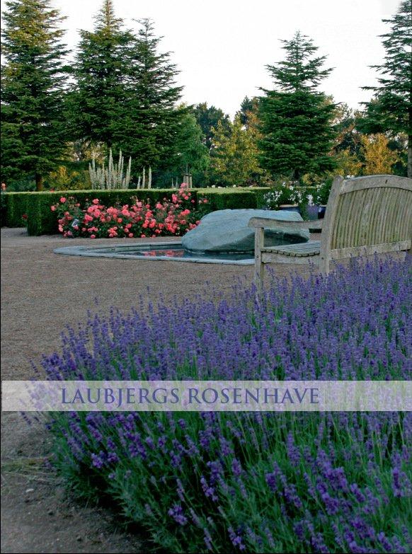 Laubjergs Rosenhave bog - Dansk