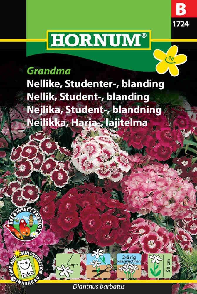 Nellike frø - Studenternellike  blanding Grandma