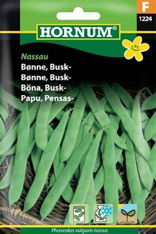 Bønnefrø - Buskbønne - Nassau