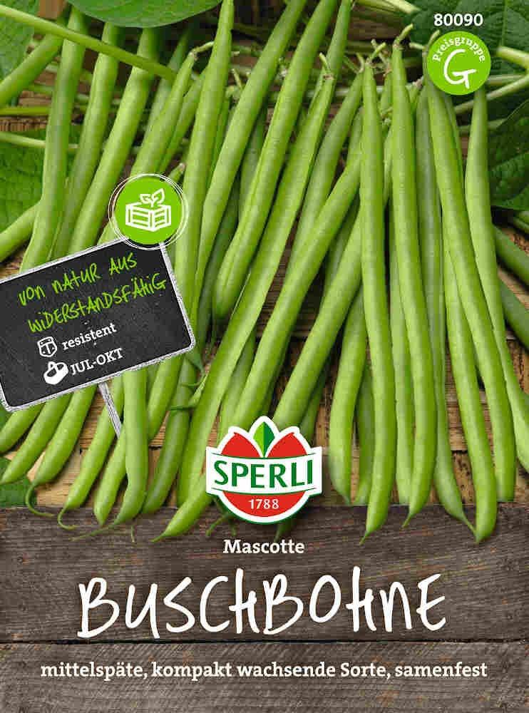Buskbønne frø - Buschbohne Mascotte