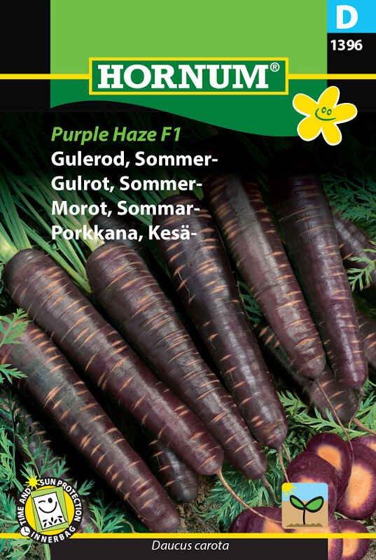 Gulerodsfrø - Sommergulerod - Purple Haze F1