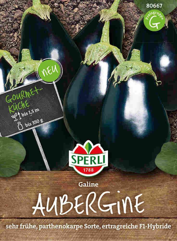 Aubergine frø - Aubergine Galine - NYHED