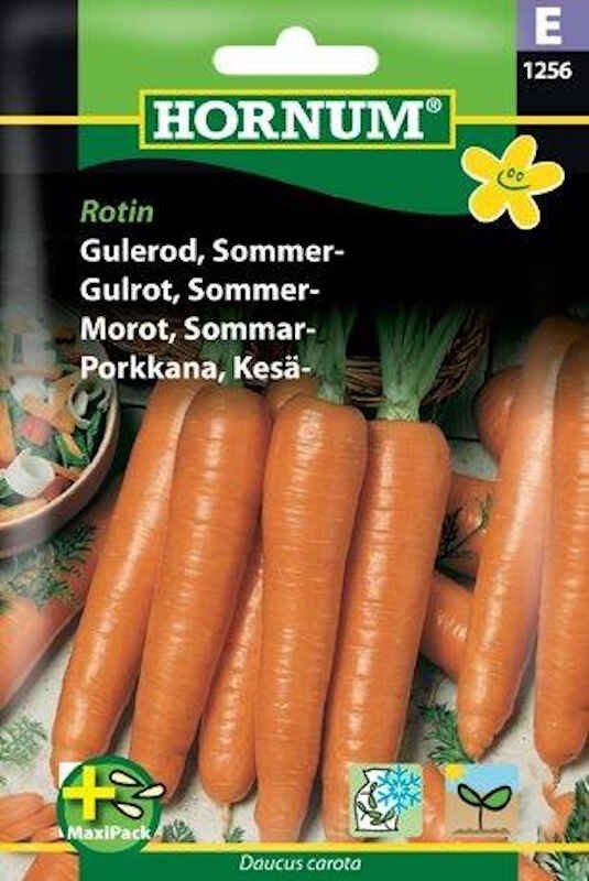Gulerodsfrø - Sommergulerod - Rotin, MaxiPack