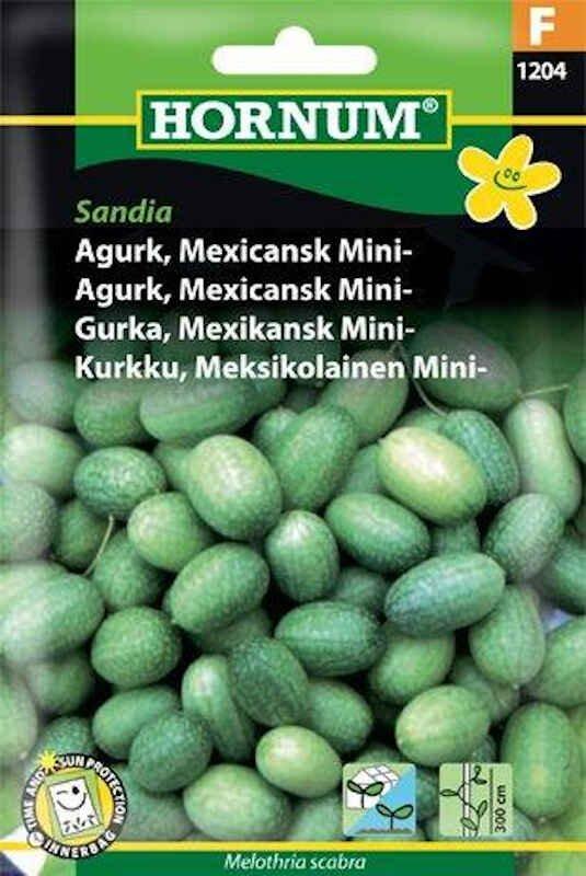 Agurkefrø - Mexicansk Mini - Sandia