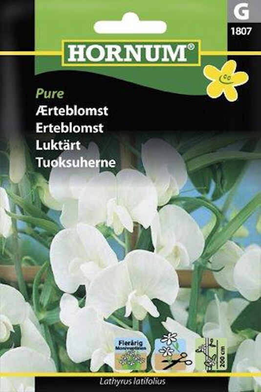 Ærteblomstfrø - Pure