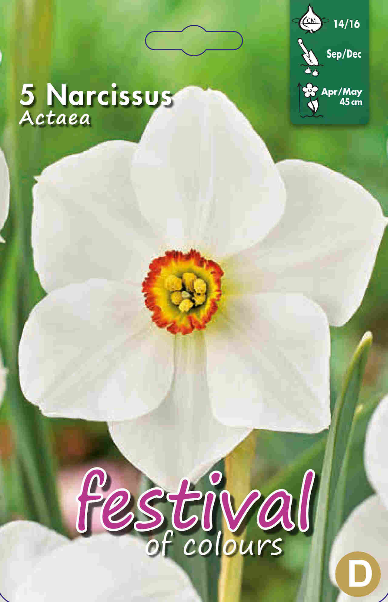 Påskeliljeløg - Narcissus Actaea 14/16