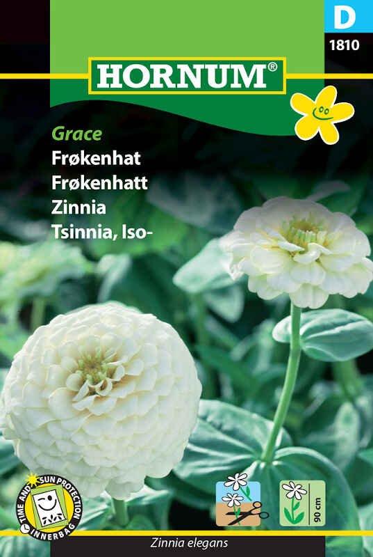 Frøkenhat frø - Grace