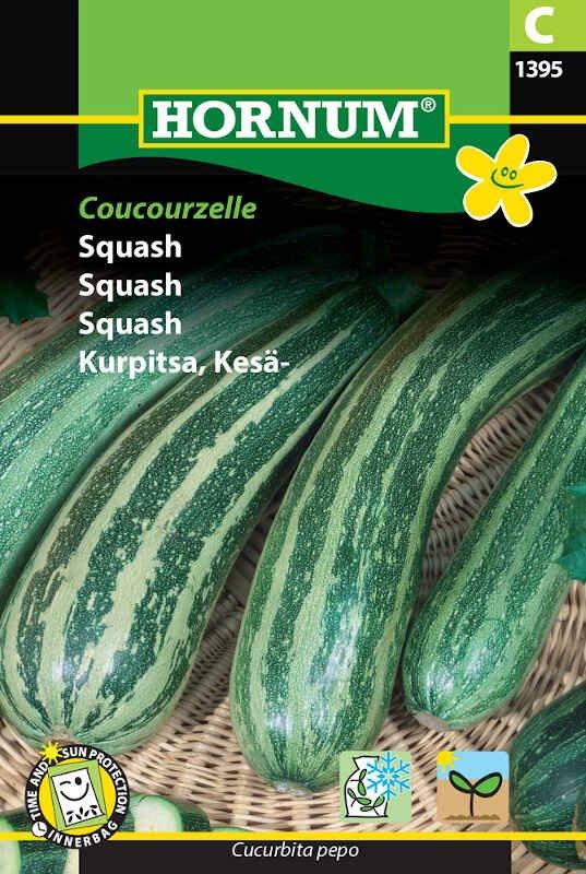 Squashfrø - Coucourzelle