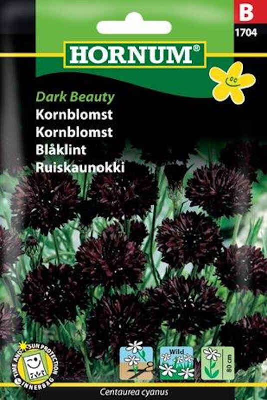 Kornblomst frø - Dark Beauty