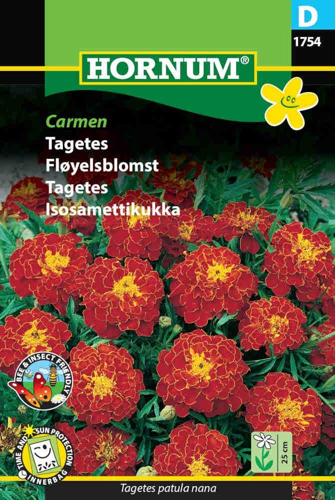 Tagetes frø - Carmen
