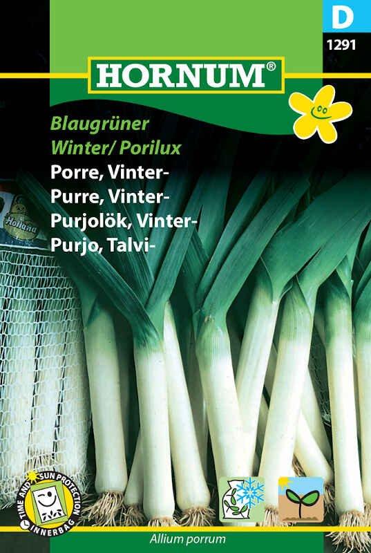 Porrefrø - Vinterporre - Blaugrüner