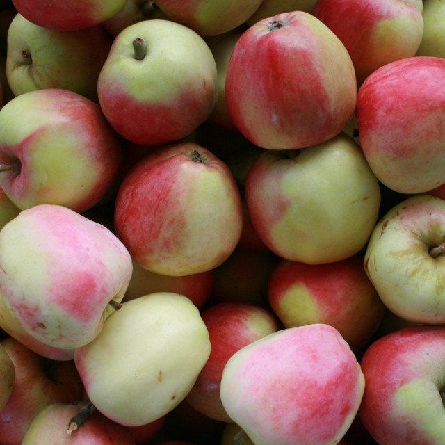 Smukke Rød Ananas æbler