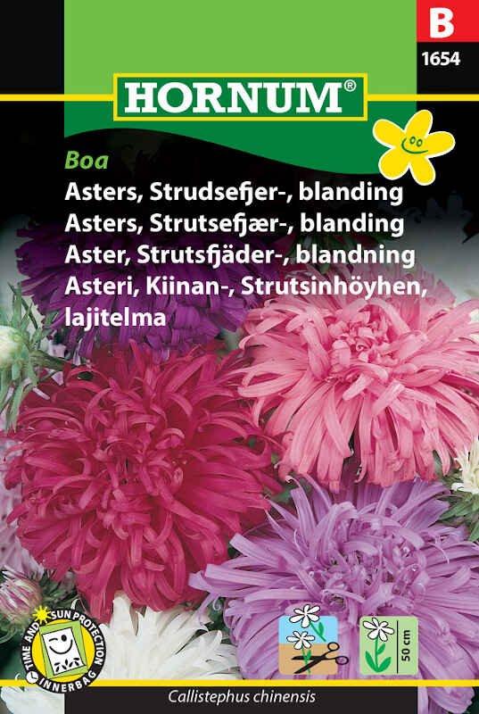 Asters frø - Strudsefjer - blanding - Boa