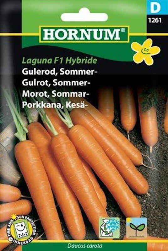Gulerodsfrø - Sommergulerod - Laguna F1 Hybride