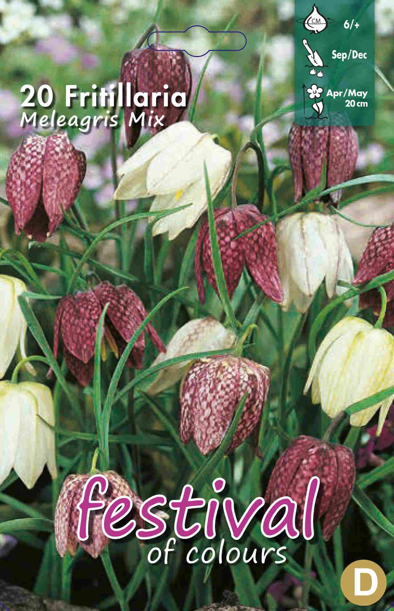 Vibeæg - Fritillaria Meleagris 6/+