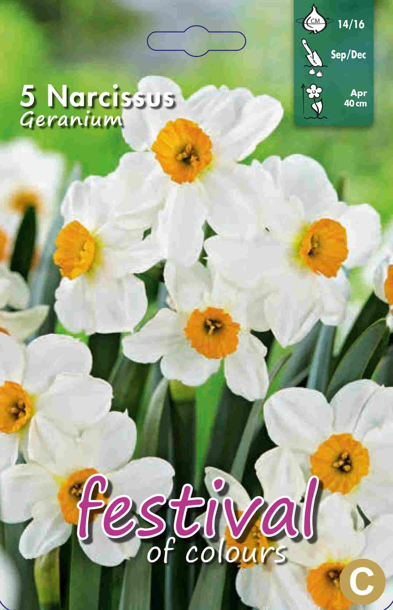 Påskeliljeløg - Narcissus Geranium 14/16