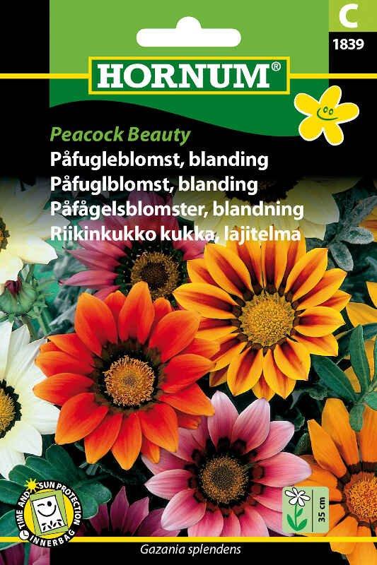 Påfugleblomst frø- blanding Peacock Beauty