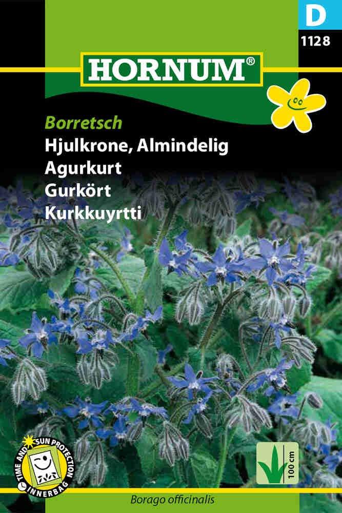 Hjulkrone frø - Almindelig - Borretsch