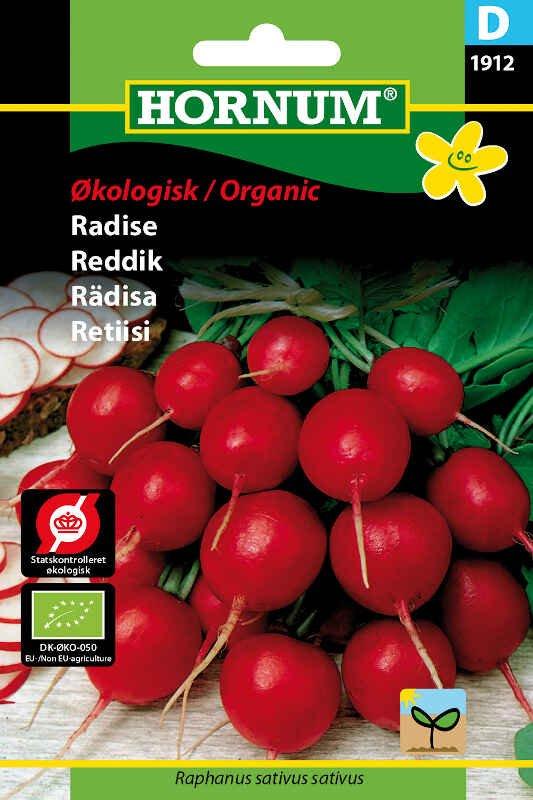 Økologisk Radise frø - Cherry Belle