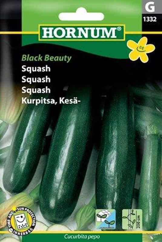 Squashfrø - Black Beauty