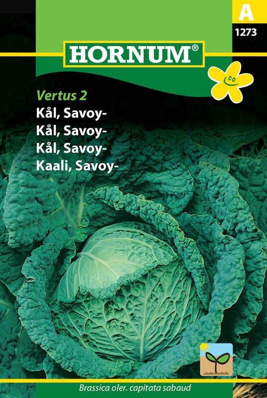 Savoykål frø - Vertus 2