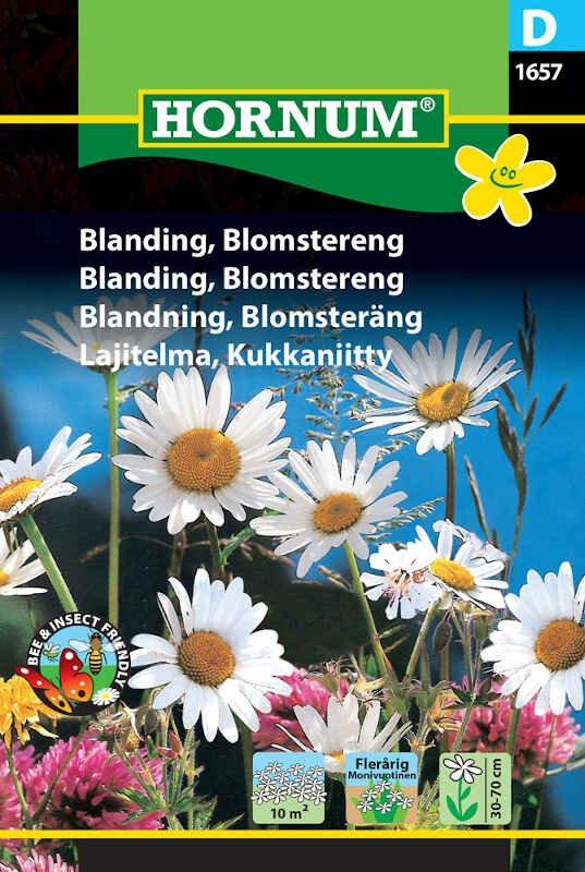 Blomster frøblanding - Blomstereng