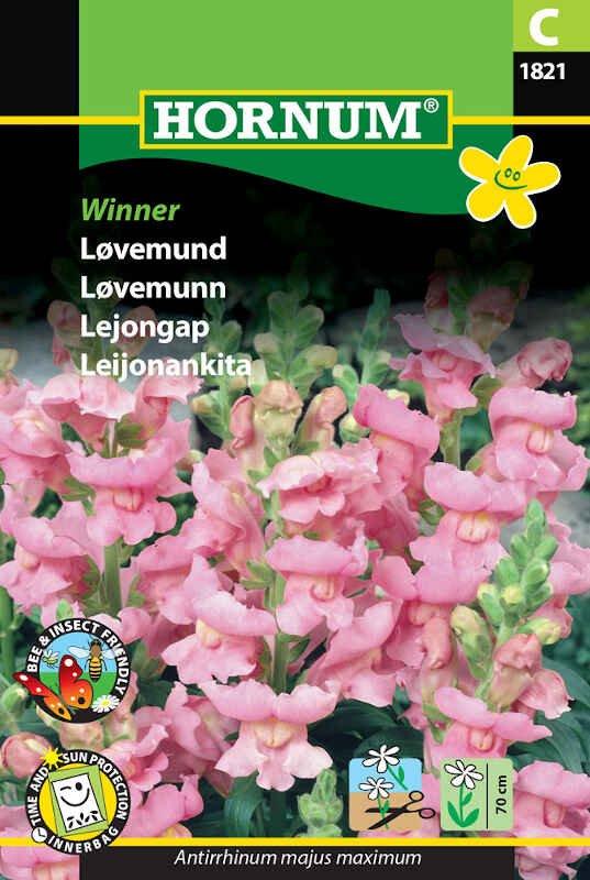 Løvemund frø - Winner
