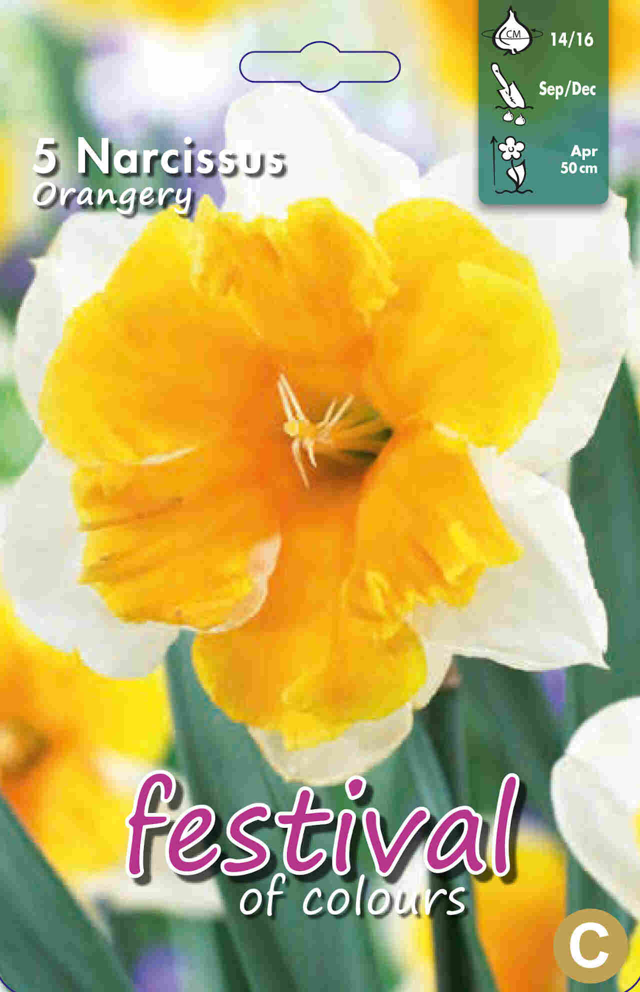 Påskeliljeløg - Narcissus Orangery 14/16