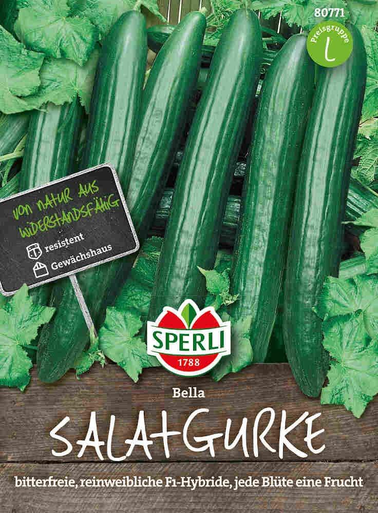 Salatagurk - Salatgurke Bella