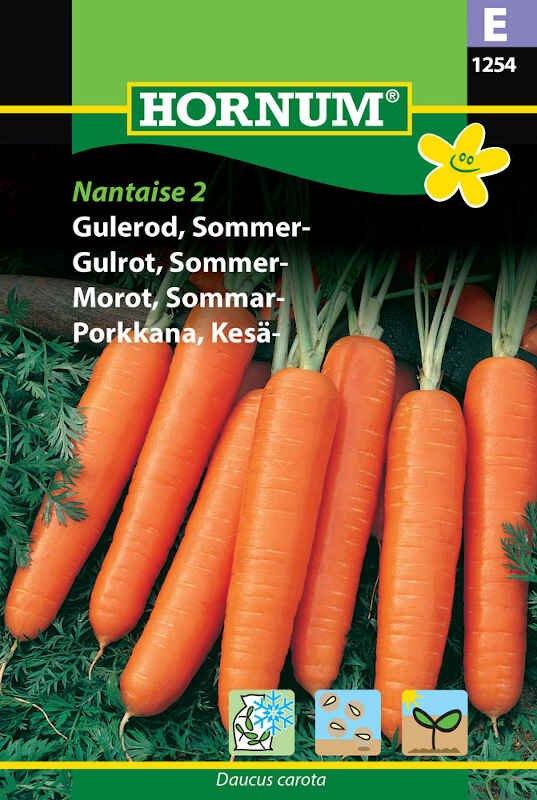 Gulerodsfrø - Sommergulerod - Nantaise 2