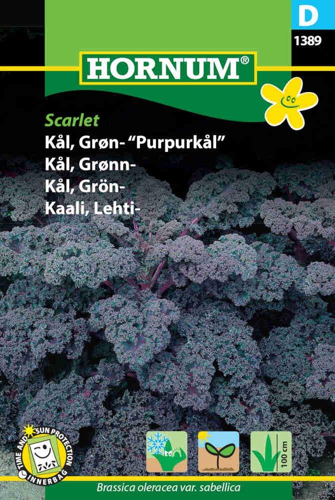 Grønkål frø - Scarlet