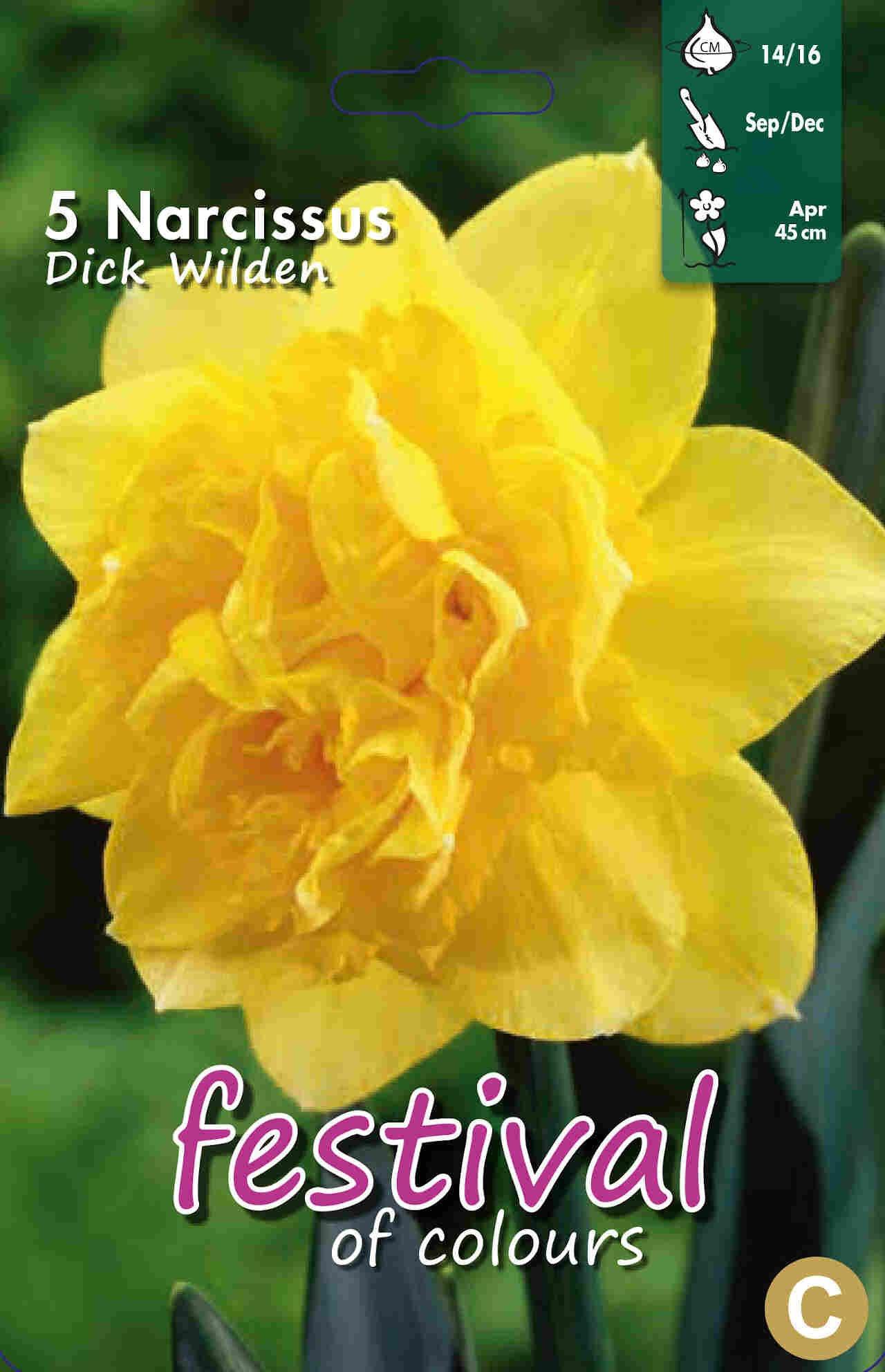 Påskeliljeløg - Narcissus Dick Wilden 14/16