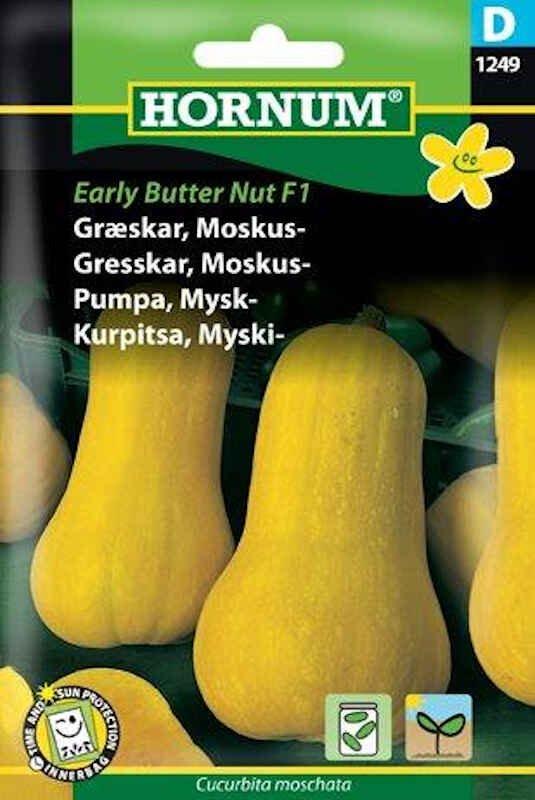 Græskarfrø - Moskus - Early Butter Nut F
