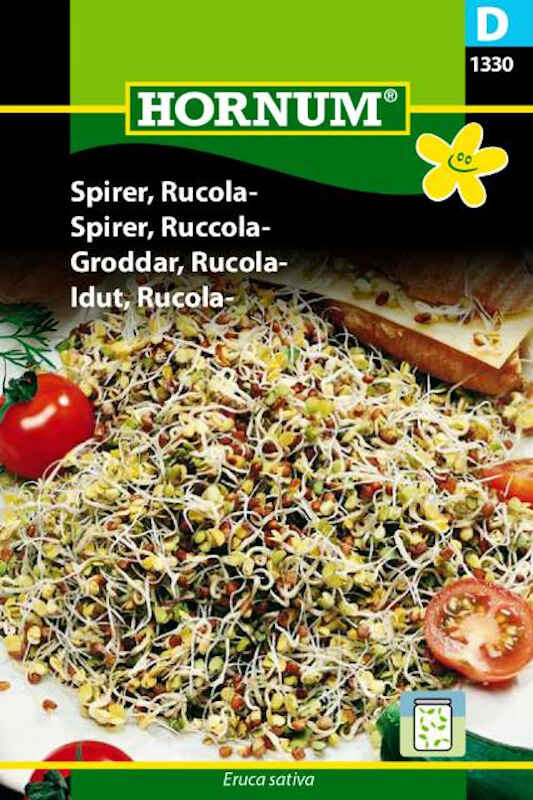 Spirefrø - Rucola