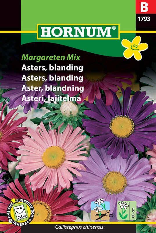 Asters frø - blanding - Margareten Mix