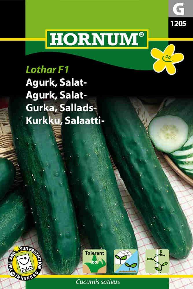 Agurkefrø - Salatagurk - Lothar F1
